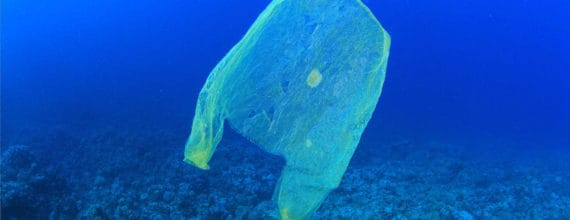 Plastic Bag Floating in Ocean