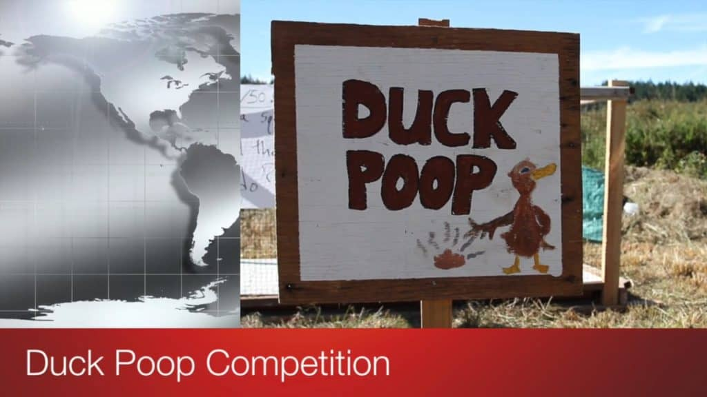 The Duck Poop Competition Video